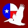 Texas Solidarity Party